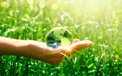 The Rewards of Environmental Advocacy in Business